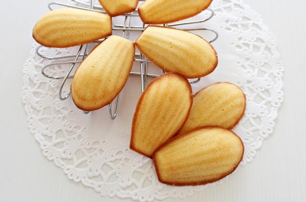 Yoghurt Honey Madeleines